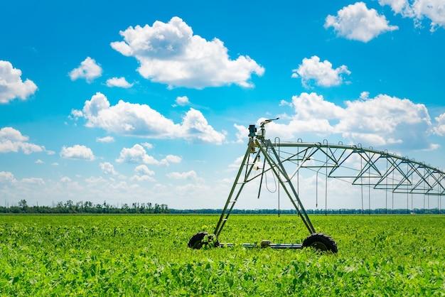 Irrigazione dei terreni agricoli per garantire la qualità del raccolto. giornata di sole, luce solare.