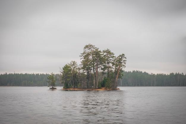 Isola sul lago nel bosco novembre, autunno tempo uggioso