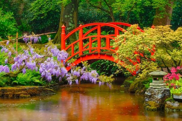 Giardino giapponese, parco clingendael, l'aia, paesi bassi