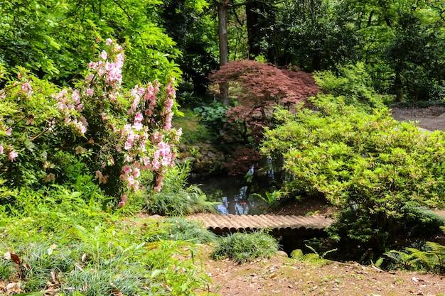 Giardino giapponese con lago nel giardino botanico di batumi, georgia