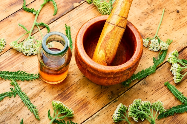 Vasetto di tintura di achillea.medicina a base di erbe medicinali.erboristeria e fitoterapia.erbe selvatiche medicinali