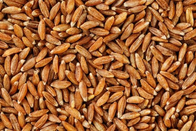 Primo piano del riso sbramato del gelsomino. consistenza del grano organico