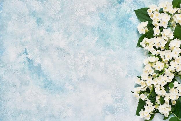 Bordo di fiori di gelsomino, filadelfo o finto arancio su sfondo blu colorato. copia spazio, in alto