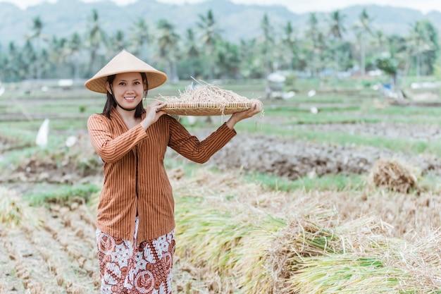 I contadini giavanesi portano i raccolti di riso nei campi con vassoi di bambù intrecciati