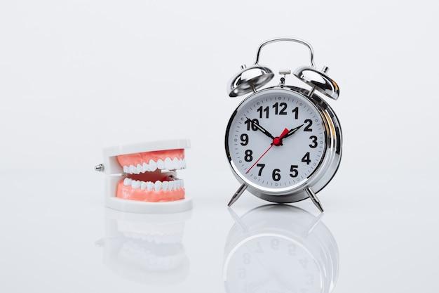 Modello a mascella e sveglia. è ora di visitare un dentista.