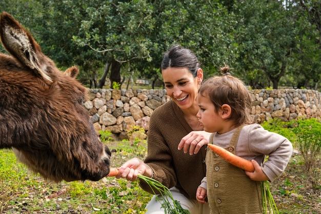 Madre allegra e figlia che alimentano asini divertenti in terreni agricoli
