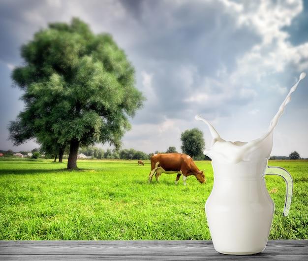Brocca di latte con spruzzata con la mucca in prato