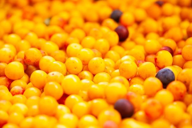 Prugne gialle mature succose della ciliegia si chiudono su