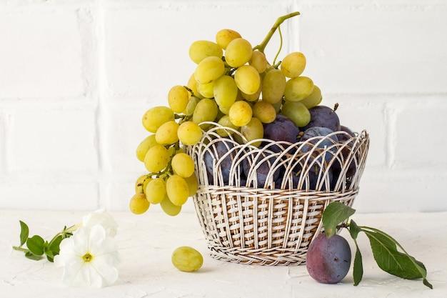 Prugne mature appena raccolte e un grappolo di uva bianca matura in un cesto di vimini sullo sfondo bianco. frutti appena raccolti.