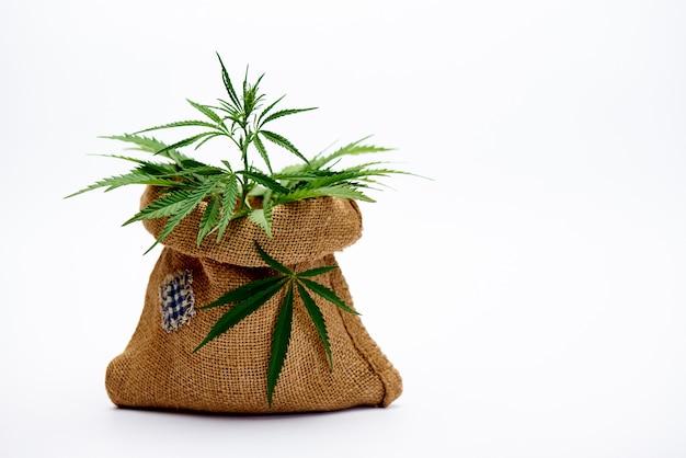 Borsa di iuta con foglie di cannabis su uno spazio bianco.