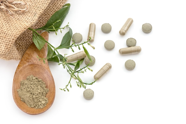 Kariyat o andrographis paniculata, ramo di foglie verdi, capsule, compresse e polvere isolato su bianco
