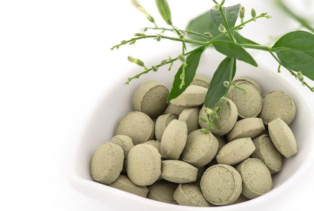 Kariyat o andrographis paniculata, foglie verdi di ramo e tablet isolato su bianco.