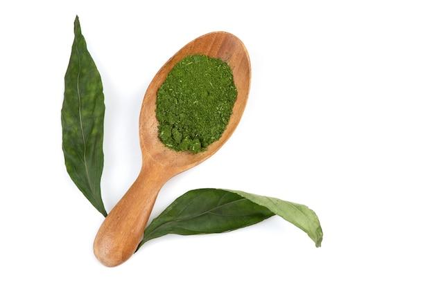 Kariyat o andrographis paniculata foglie e polvere isolato su bianco.vista dall'alto, piatto laici.