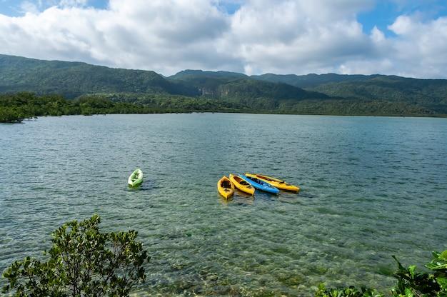 Kayak che galleggiano sulle montagne della foresta di mangrovie del fiume con cascata