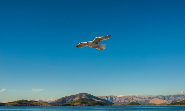 Kerkyra corfu town isola di corfù nel mar ionio.