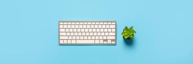 Tastiera e fiore su sfondo blu. concept area di lavoro, lavoro al computer, libero professionista, ufficio.