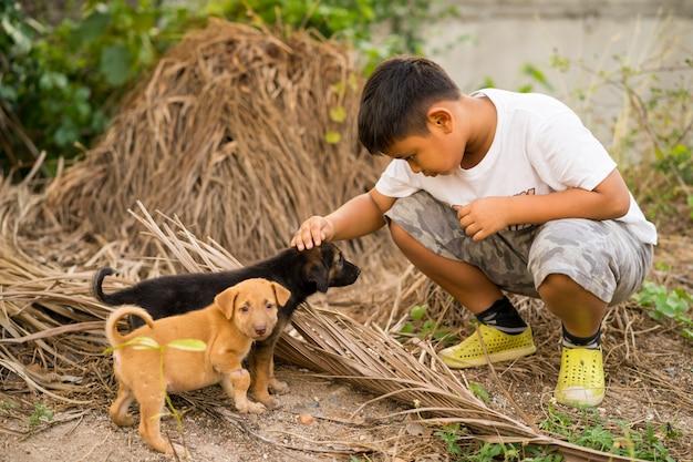 Ragazzo del bambino che gioca con i cuccioli randagi
