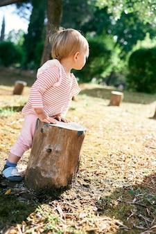 Il bambino sta nel cortile appoggiando le mani su un ceppo d'albero vista posteriore