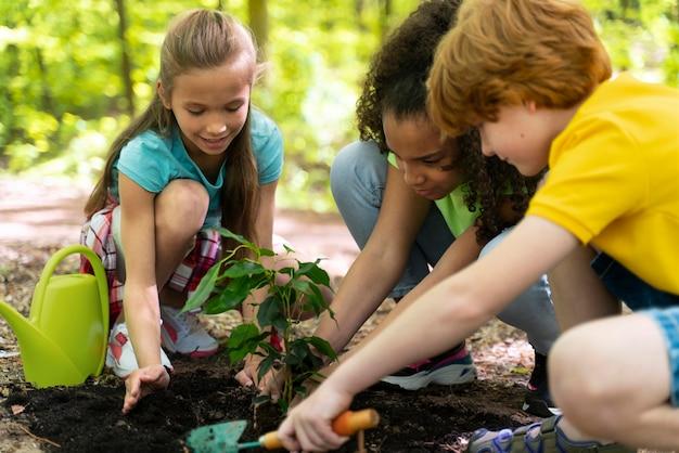 Bambini che piantano insieme nella foresta