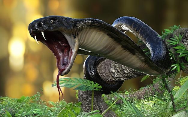 King cobra il serpente velenoso più lungo del mondo nella giungla con tracciato di ritaglio, king cobra snake