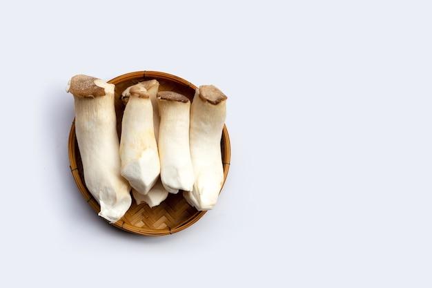 Re oyster mushroom nel cesto di bambù.