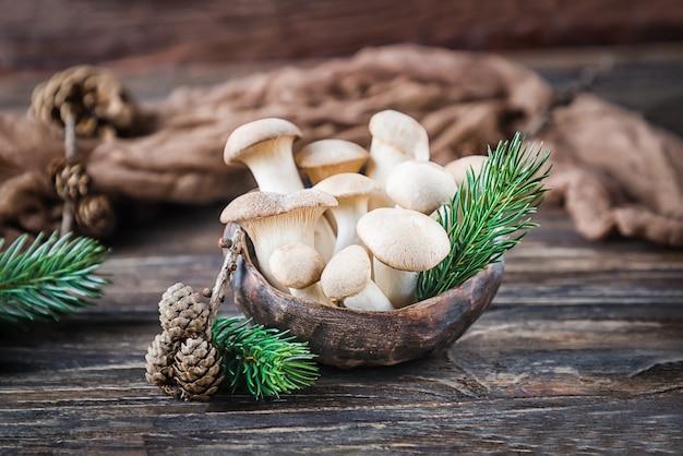 Funghi ostrica reale pleurotus eryngii sullo sfondo di legno marrone