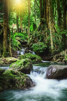 Cascata di lan di klong, bella cascata in foresta pluviale a kampangphet, tailandia.