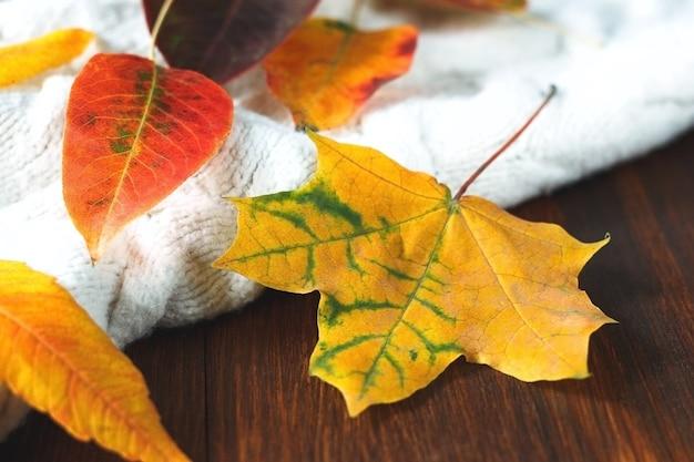 Maglione bianco lavorato a maglia con foglie autunnali rosse e arancioni