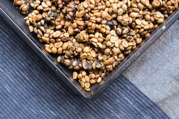 Chicchi di caffè kopi luwak