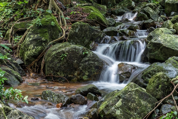 Cascata di krok-e-dok e foresta pluviale sulla montagna nel parco nazionale di khao yai, tailandia
