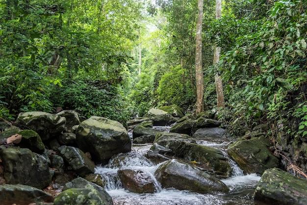 Cascata di krok-e-dok e foresta pluviale sulla montagna nel parco nazionale di khao yai, tailandia.