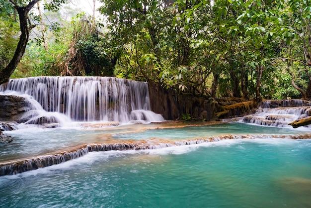 Le cascate di kuang si o conosciute come cascate di tat kuang si. queste cascate sono una delle mete preferite dai turisti a luang prabang con una piscina blu turchese