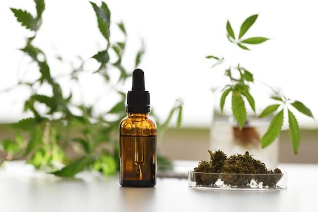 Contenitore per olio cbd da laboratorio con sfondo naturale con piante di canapa e fiori secchi