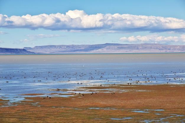 Lago argentino a el calafate, patagonia, argentina