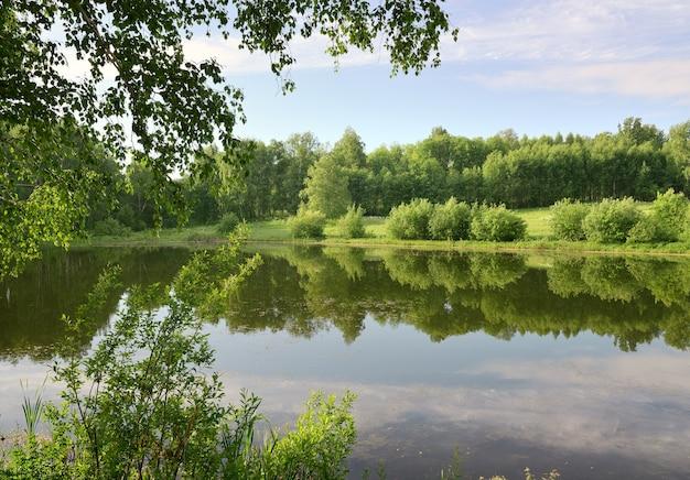 Lago nella foresta in estate la superficie dell'acqua con il riflesso degli alberi verdi