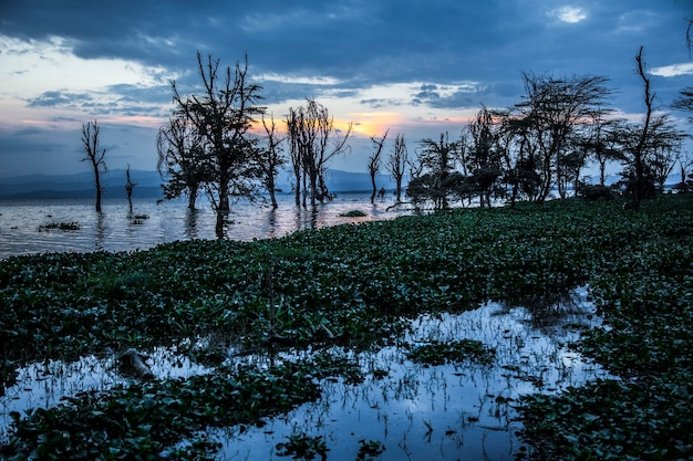 Lago naivasha di notte. kenya