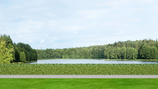 Vista del lago in parco - rappresentazione 3d