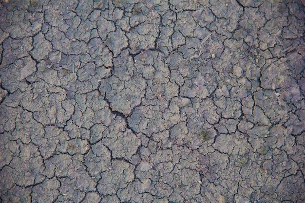 Terreno con terreno asciutto e screpolato. sfondo del riscaldamento globale.