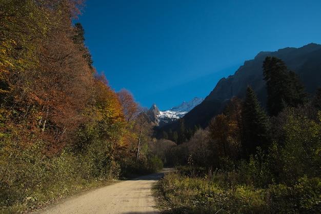 Abbellisca le belle montagne con la foresta ed i pini e il cielo blu con i raggi del sole e mette in evidenza con la strada nel caucaso nel villaggio di dombay della russia