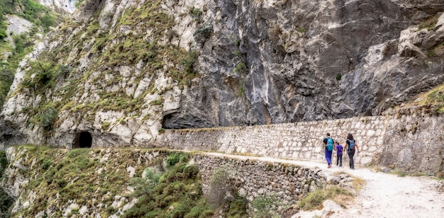 Paesaggio del percorso delle cure nei picos de europa. tra cantabria, asturie e castilla y león. alba tra le montagne