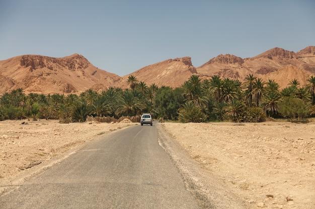 Paesaggio dell'oasi di chebika nel deserto del sahara. l'auto entra nelle palme. oasi di montagna con vista panoramica in nord africa. situato a piedi jebel el negueba. montagne dell'atlante nel pomeriggio soleggiato. tozeur, tunisia