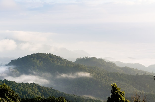 Paesaggio di nuvole sopra la cordigliera al mattino dall'alta montagna al punto di vista parco nazionale huai nam dang, provincia di chiang mai e mae hong son, thailandia