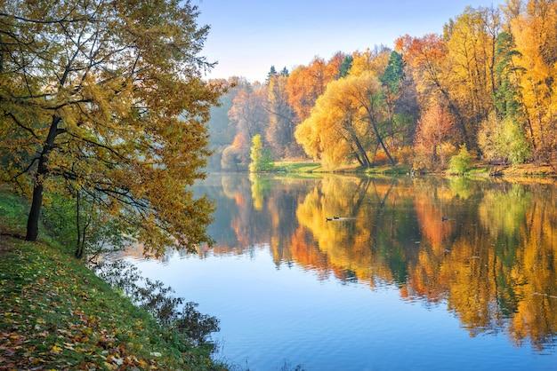 Il paesaggio degli alberi variopinti con la riflessione nello stagno dell'autunno tsaritsyno parcheggia a mosca