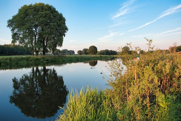 Paesaggio olandese della natura acqua alberi tramonto paesi bassi