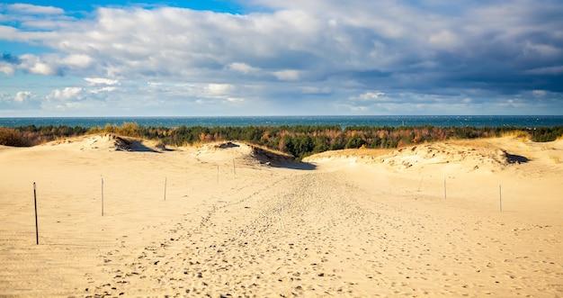 Paesaggio da dune grigie allo spiedo dei curoni, lituania