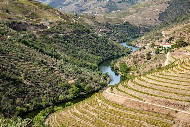 Paesaggio di enormi montagne con un fiume curvo