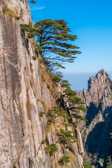 Paesaggio del monte huangshan (montagne gialle). patrimonio mondiale dell'unesco. situato a huangshan, anhui, cina.