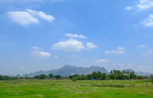 Paesaggio: montagne, cielo azzurro, nuvole, piante verdi. agricola in thailandia.