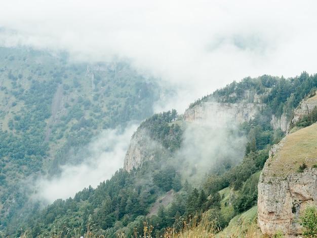 Paesaggio montagne natura aria fresca pini provincia. foto di alta qualità