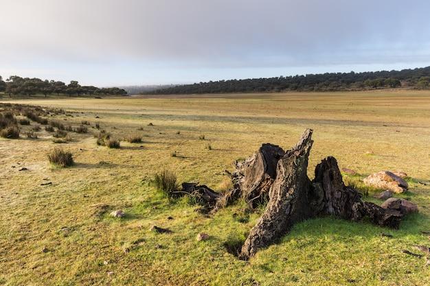 Paesaggio nel parco naturale di cornalvo. extremadura. spagna.